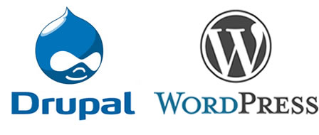 WordPress or Drupal for your project?